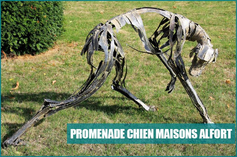 balade chien maisons alfort