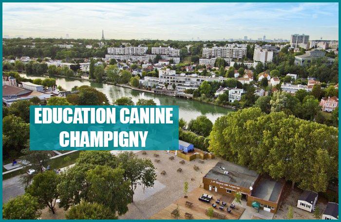 dressage chien champigny sur marne